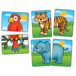 058_jungle_heads__tails_close_up_cards_web_1800.jpg